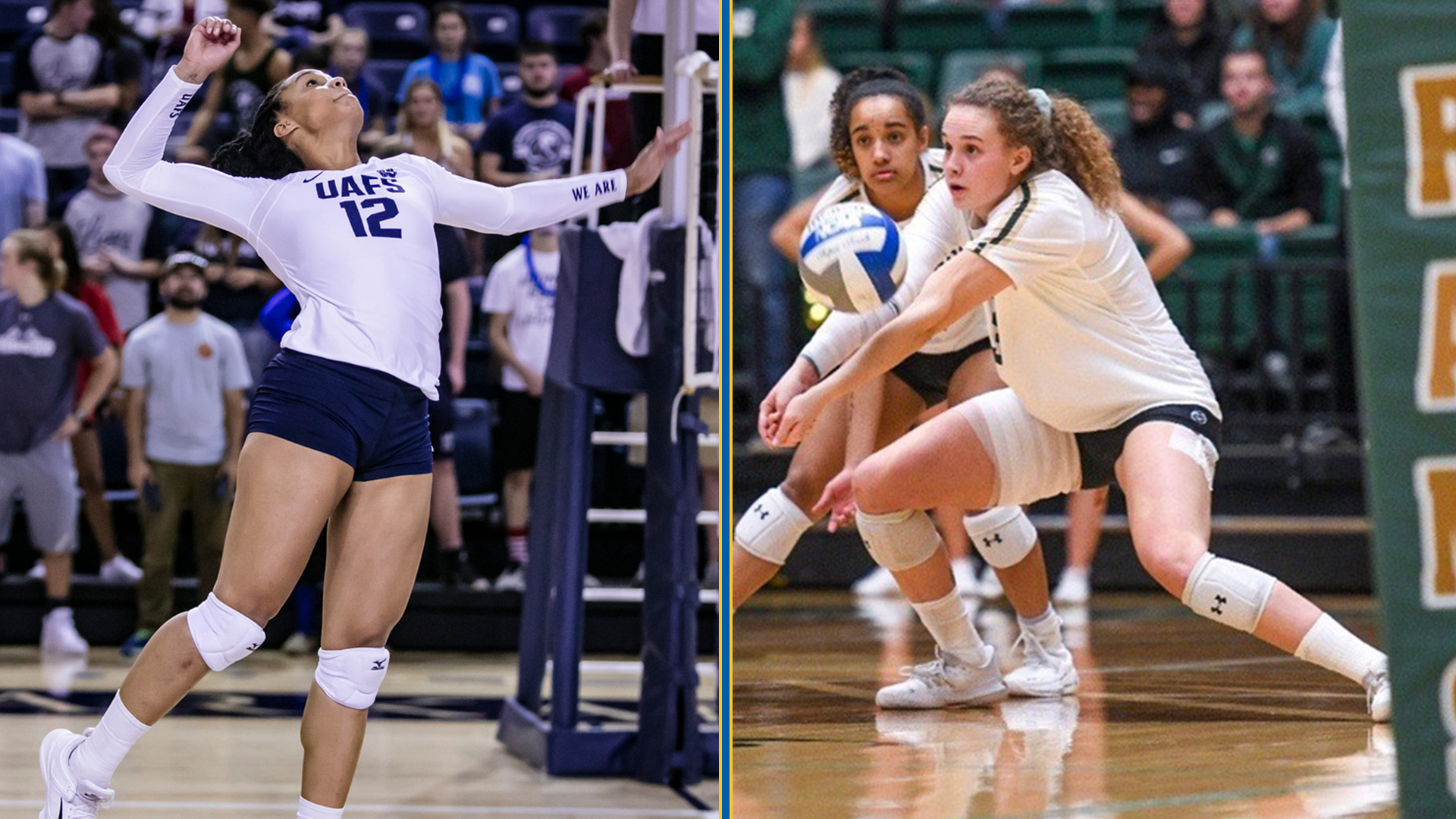 Two More Signees Join 2020 Beach Volleyball Signing Class Texas A M Kingsville Athletics